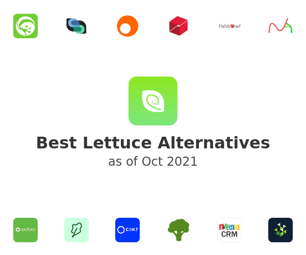 Best Lettuce Alternatives