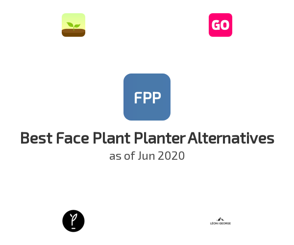 Best Face Plant Planter Alternatives