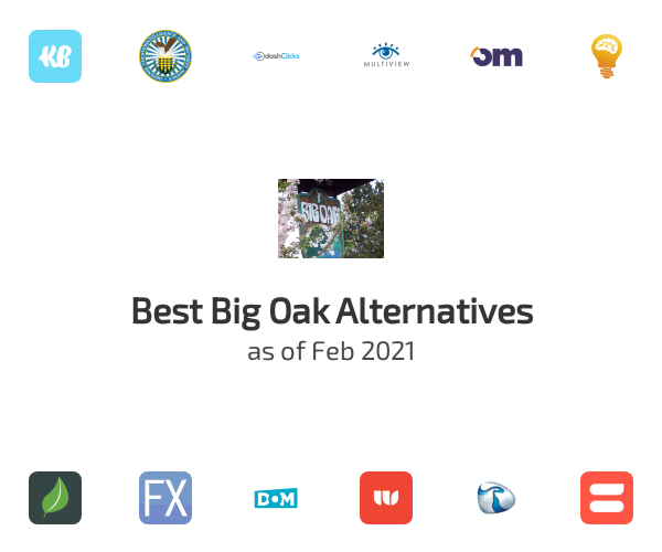 Best Big Oak Alternatives