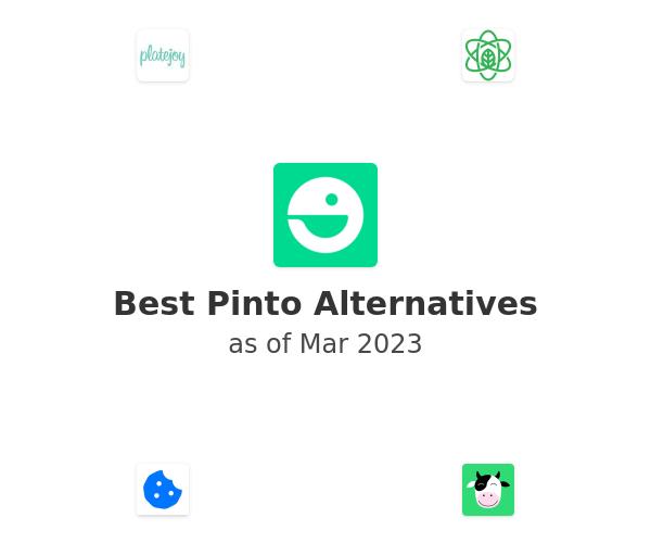 Best Pinto Alternatives