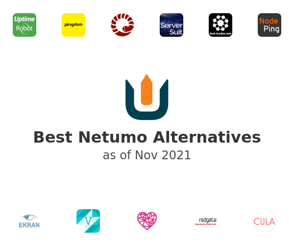 Best Netumo Alternatives