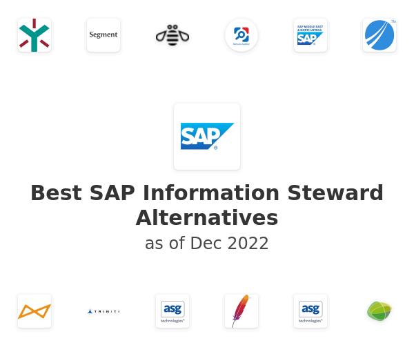 Best SAP Information Steward Alternatives