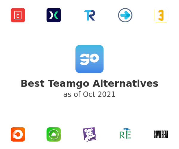 Best Teamgo Alternatives