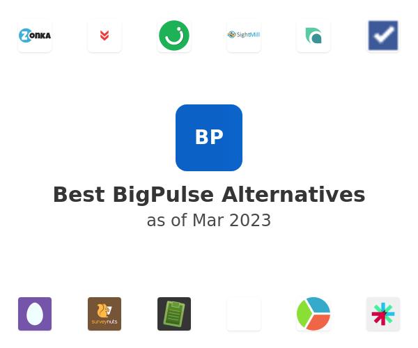 Best BigPulse Alternatives