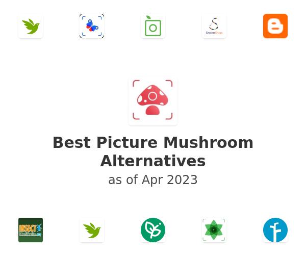 Best Picture Mushroom Alternatives