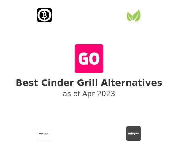 Best Cinder Grill Alternatives