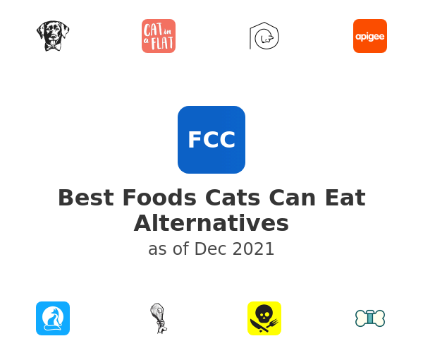 Best Foods Cats Can Eat Alternatives