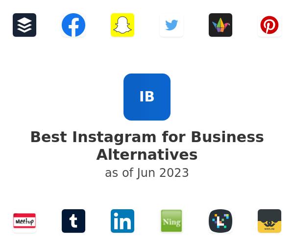 Best Instagram for Business Alternatives