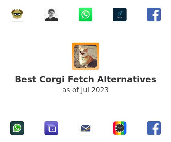 Best Corgi Fetch Alternatives