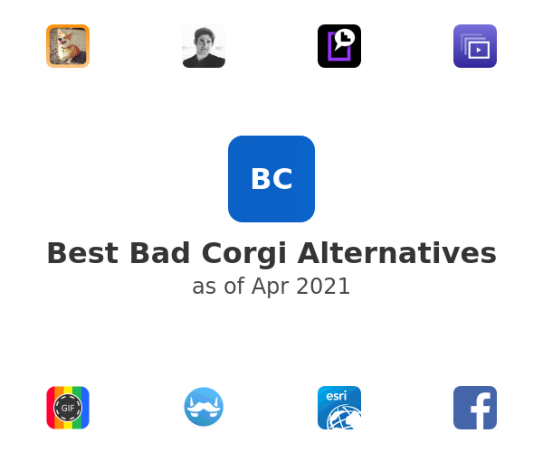 Best Bad Corgi Alternatives