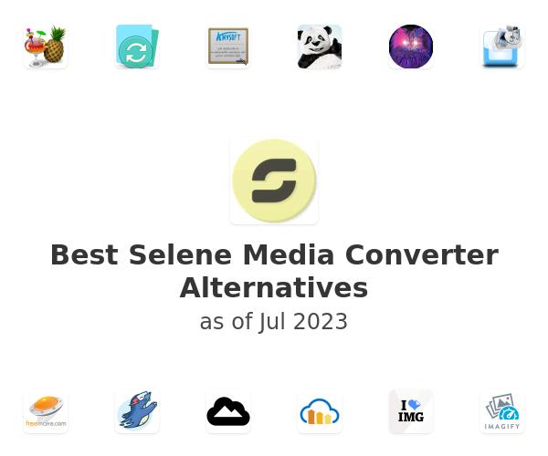 Best Selene Media Converter Alternatives