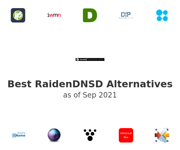 Best RaidenDNSD Alternatives