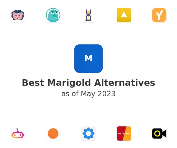 Best Marigold Alternatives