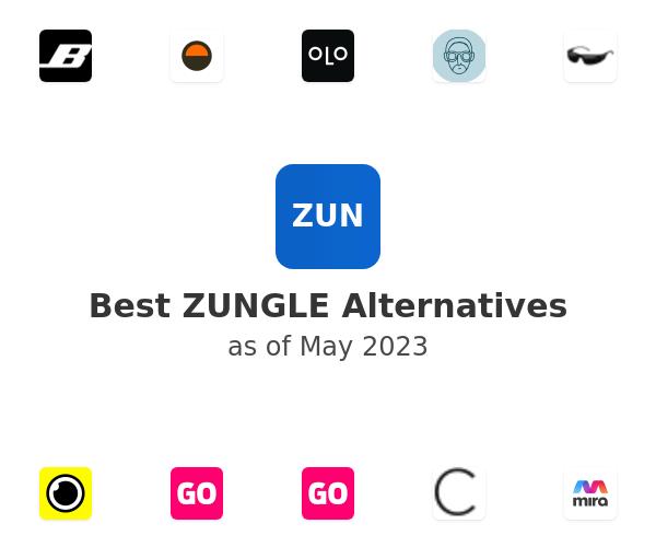 Best ZUNGLE Alternatives