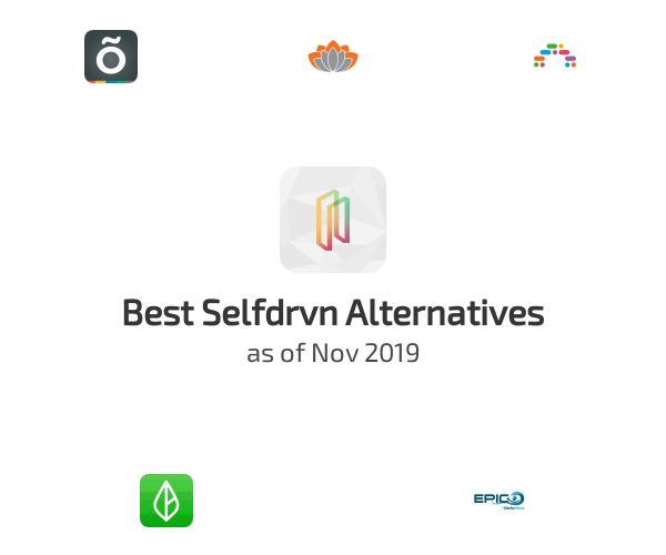 Best Selfdrvn Alternatives