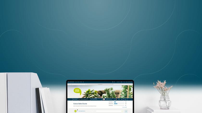 aNewSpring Landing Page