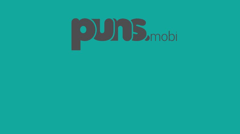 PUNS.mobi Landing Page
