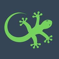GeckoEngage logo