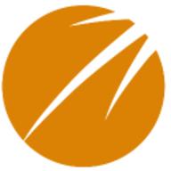 Brandwise Vision logo