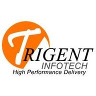 Trigent Implementation Services logo