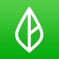 Branch Messenger logo