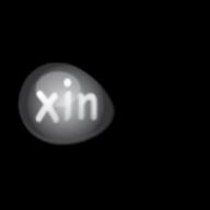 Xin Inventory logo