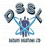 DataSys Solutions logo