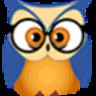 Stat Owl logo