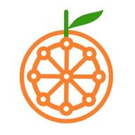 Riple.io logo