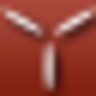 Birds of Steel logo