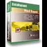 DataNumen Word Repair logo