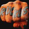 RUCKUS Consulting logo