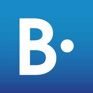 BrandpointHUB logo