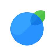 InvoiceBerry logo