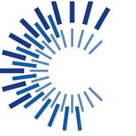 CFO Solutions logo