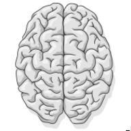 Mental Notes logo