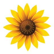 Bliss Health logo