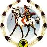 Tribal Higher Education logo
