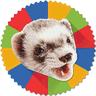 eFerret logo