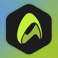 Skyrunners logo