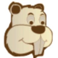 KastorSoft Screenshot logo