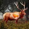 Deer Target Hunting – Pro logo