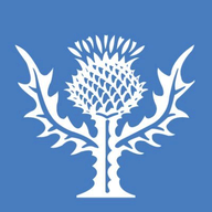 Capacitor logo
