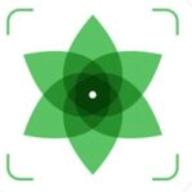 Plant Identification logo