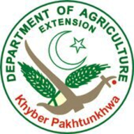 Agriculture Extension KP logo