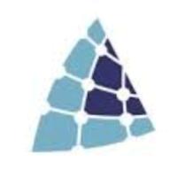 EntelliFusion logo