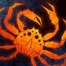 Pizza Vs. Skeletons logo