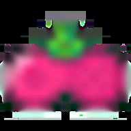 Ludo STAR logo