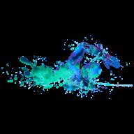 Swim logo