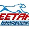 Cheetah Freight logo